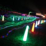 Neon Fun Run through the woods